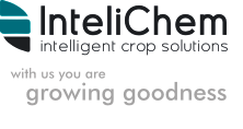 IntelliChem